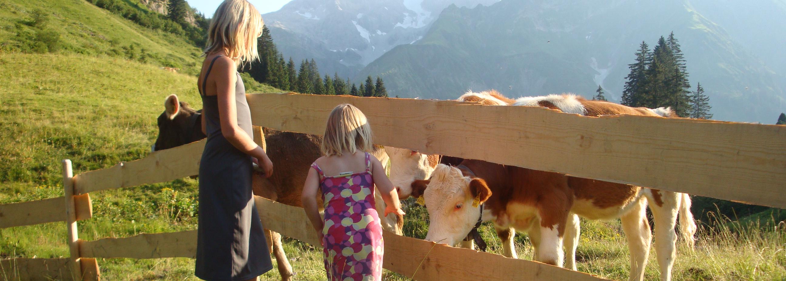 Wandern am Arlberg Bregenzerwald Appartments Schwarzmann